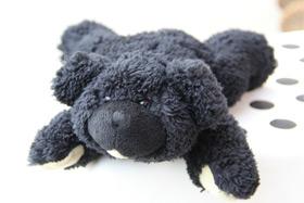 每周奖品:亚洲动物基金熊公仔