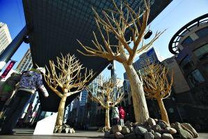 志愿者收集8万双筷子拼成树(图)