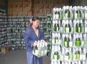 马红芳通过小额信贷创业的故事