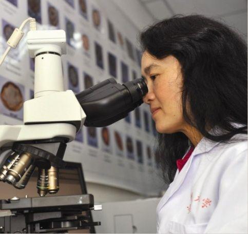 第八届中国青年女科学家奖之赵艳