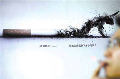 保护动物广告牌图片