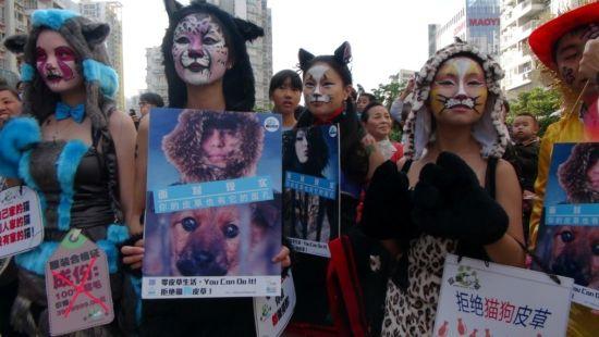猫女郎现身艺穗节呼吁拒绝猫狗皮草